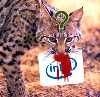 AMD Bobcat – порвет ли рысь Intel Atom?